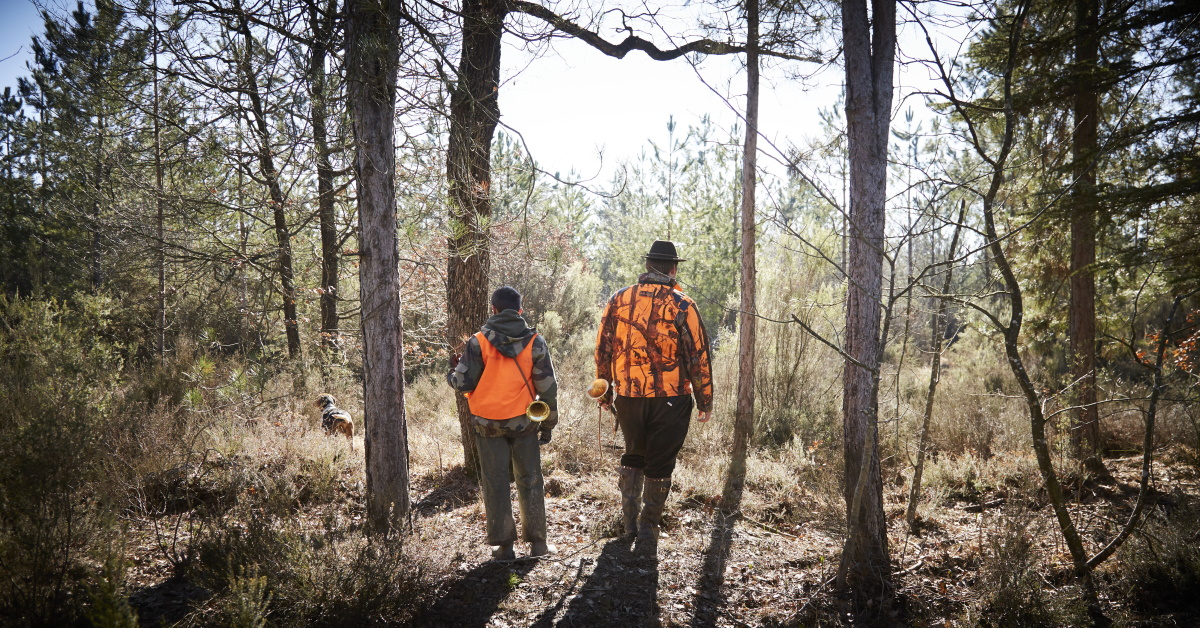 5 Reasons Fall is the Perfect Time for a Hunting Excursion